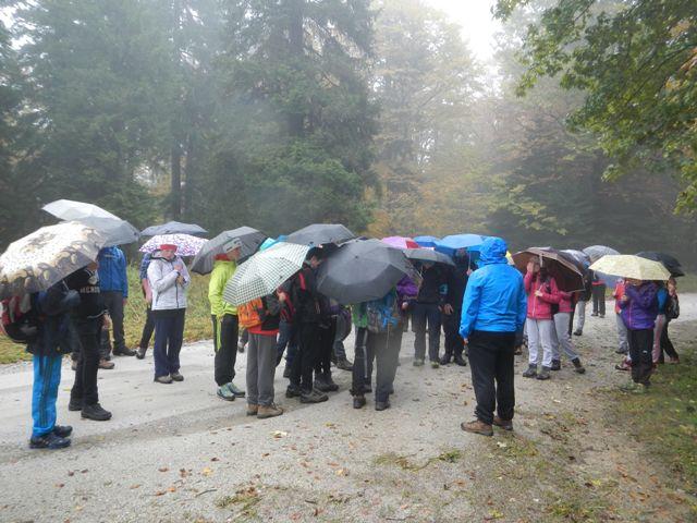 27-naravoslovni-tabor-pohorje-2015